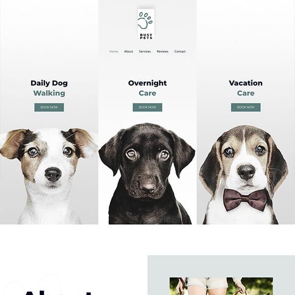 pet-care-3-business-website